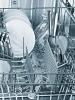 Siemens SZ 73000 Spülhilfeset speedMaticBackblechsprühkopf, Flaschenhalter, Zusatzbesteckkorb